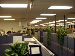 cubicle-farm on employer screening blog